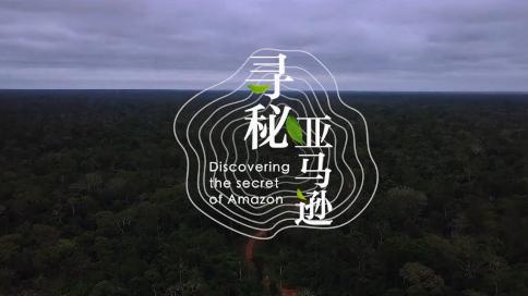 大自然家居记录片《寻秘亚马逊》