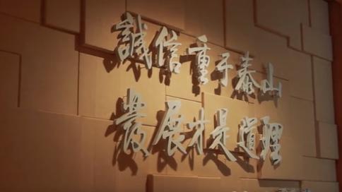 泰发集团发展纪录片