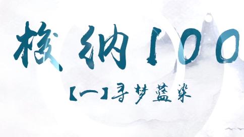 梭纳100.一期【寻梦蓝染】