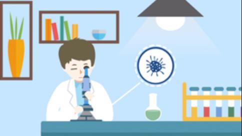小沃讲堂之b型流感嗜血杆菌的预防