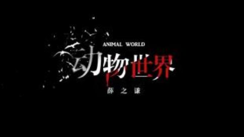 薛之谦《动物世界》