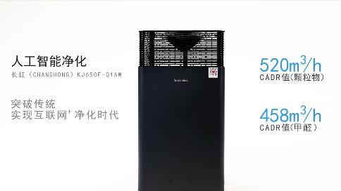 長虹凈化器650