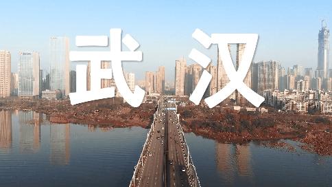 """武漢封城后的24小時,""""空城""""生活真實狀況記錄"""