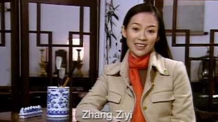 野生救援(WildAid) 公益廣告 - 章子怡 Zhang Ziyi (English Subtitled)