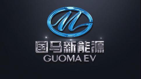 海南新港岛集团-国马新能源汽车