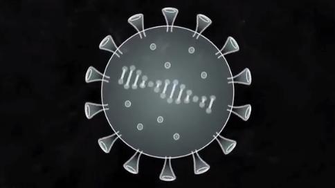 大数据分析:感染新冠病毒后,身体会发生什么变化?