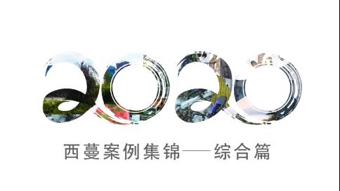 2020服务案例集锦-综合篇