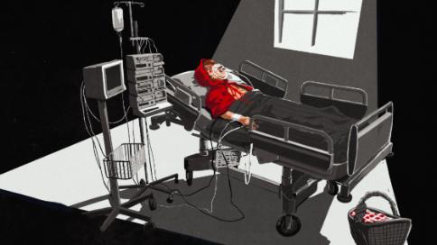 疫情童话动画片2-小红帽
