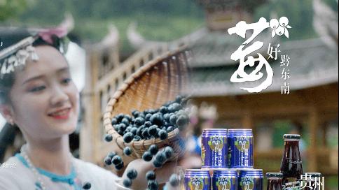 黔东南蓝莓央视tvc广告