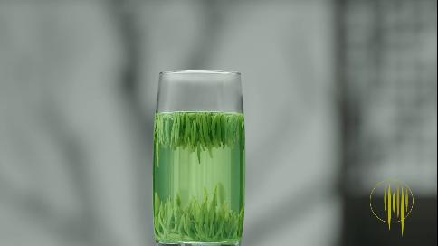 竹葉青 春茶