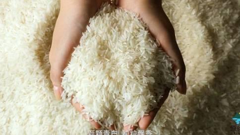 沈阳原谷御品宣传片《行于自然  天地人和》