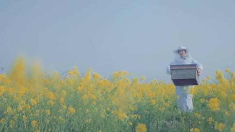 阿里巴巴形象宣传片《相信小的伟大》