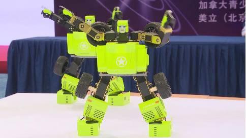 乐博杯国际机器人大赛总决赛