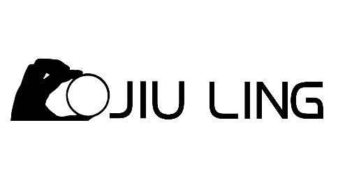 狮子logo演绎