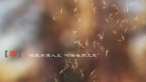 吉林电视台《回家》栏目 春晚宣传片《家》