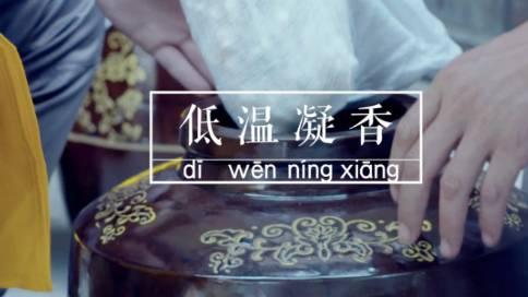 宝掌堂宣传片《禅茶工坊》
