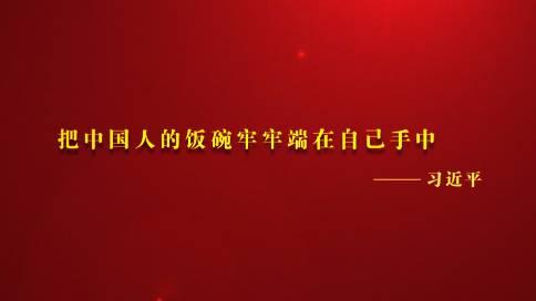 河南省中原粮食集团宣传片