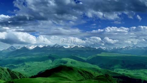 維吾爾鼓吹樂
