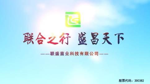 联盛科技股份有限公司