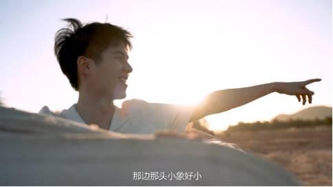 蒂芙尼 × 刘昊然公益纪录片,一场保护大象的非洲之旅