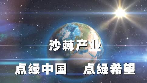 青海沙棘產業紀錄片