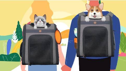 《吉信德宠物》MG动画—安戈力文化