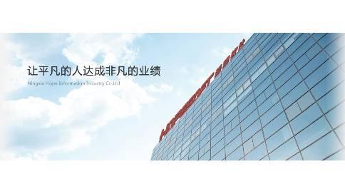 宁夏Flash制作 | 希望信息产业建设工程流程.mp4