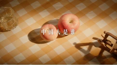 雅迪公益短片《中国人是谁》