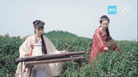 北辰青年产品宣传短视频