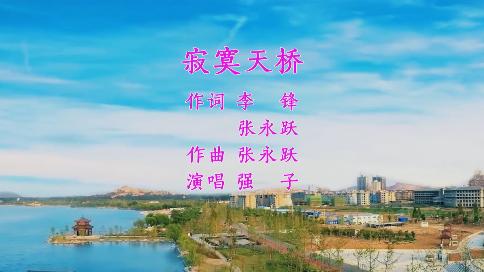 寂寞天桥(作词 李锋 张永跃 作曲 张永跃 演唱 强子)