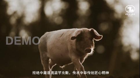 世和生态农业宣传片