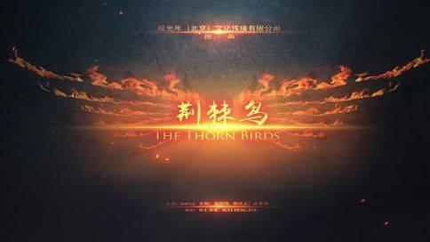动画片《荆棘鸟》玖光年文化