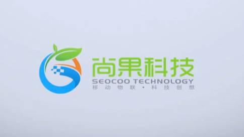 安徽尚果信息科技有限公司宣传片
