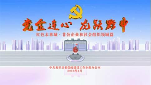 龙里县非公党建宣传片《党企连心 龙跃黔中》