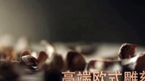 塞瓦那莉家具宣传片