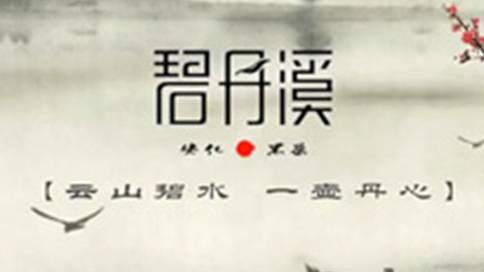 长沙安化碧丹溪茶业公司宣传片