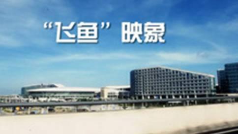 深圳宝安国际机场安全检查站品牌微电影《飞鱼映象》
