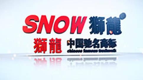 天津狮龙电动车企业宣传片