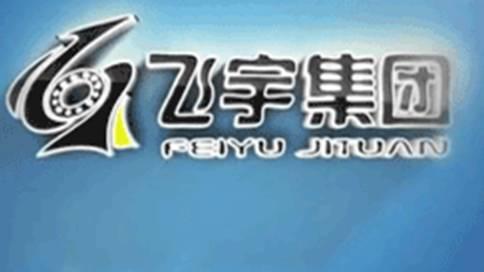 蚌埠飞宇集团企业宣传片