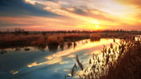 青岛姜山湿地公园宣传片
