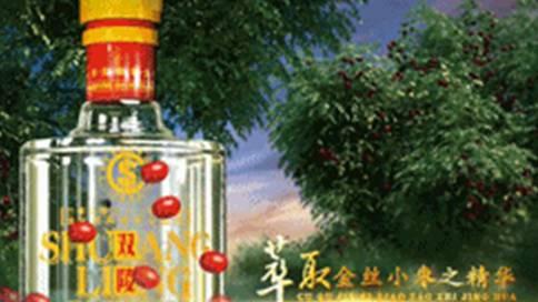 双陵春白酒广告片