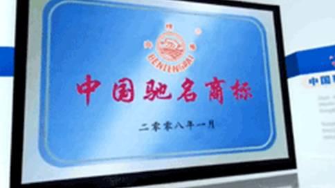 山东奔腾漆业股份企业宣传片