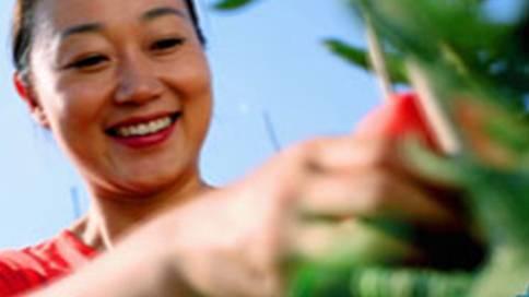中化农化爱可产品宣传片