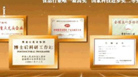 龙丹乳业企业宣传片
