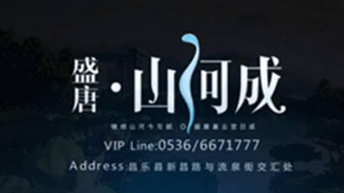 盛唐山河城房产宣传片