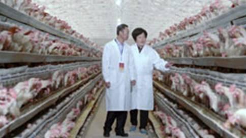 河南艾格多科技企业宣传片