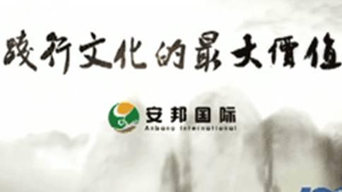 安邦国际集团企业宣传片