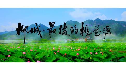 浙江·柳城畲族镇 旅游宣传片
