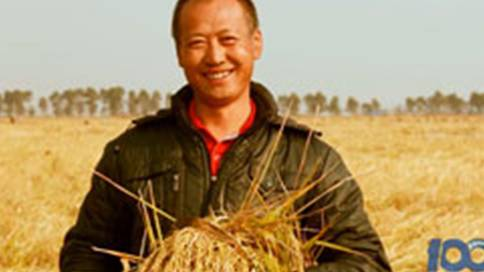 五常大米康洁水稻宣传片
