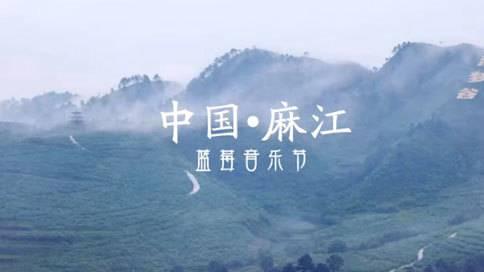 中国·麻江 蓝莓音乐节